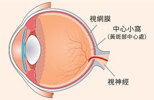 护眼保健品_2