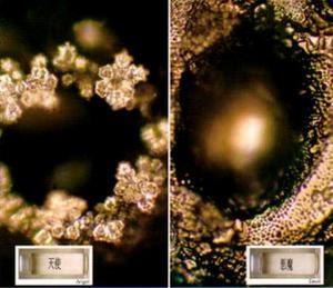 意念的不同得出的水结晶也不同