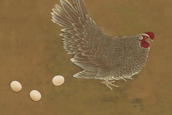 母亲转生鸡
