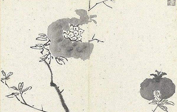 八大山人挥笔尽兴渲染-花鸟、竹石