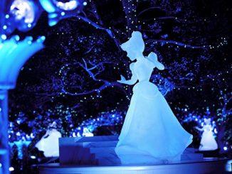 灰姑娘的水晶雕像