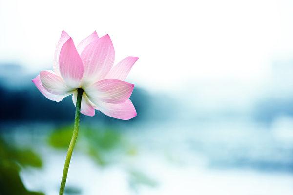 人际关系, 修养心灵, 慈悲心