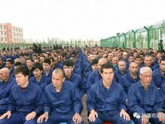 新疆, 女商人, 逃亡, 酷刑, 再教育营
