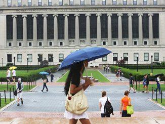 哈佛, 平均主义, 美国教育, 美国大学, 极左思想