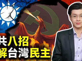 十字路口, 台湾, 2020年的总统大选, 反送中