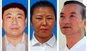 朱柯明, 张雨苍, 孙钟文, 绑架, 非法判刑