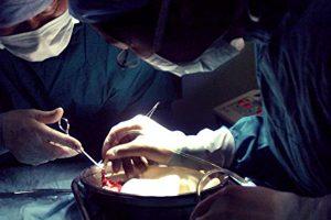 活摘器官, 福布斯, 法轮功, 反送中