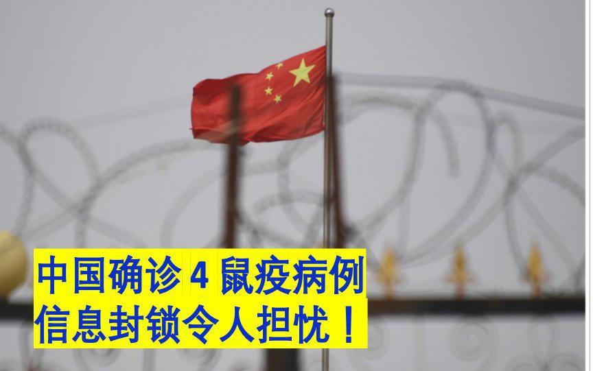 中国确诊鼠疫病例 信息封锁令人担忧