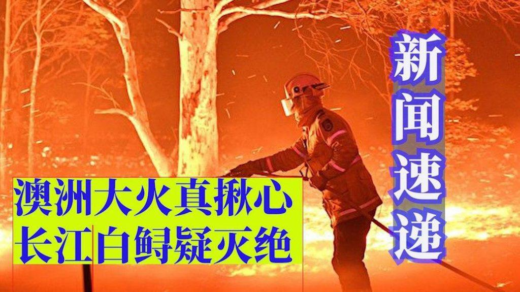 新闻速递 第六期 (14/1/2020)